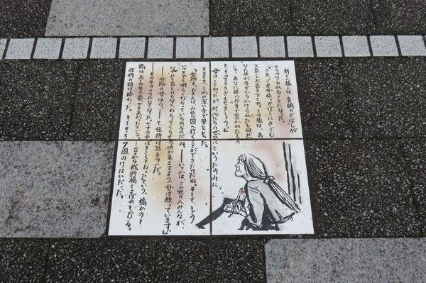 10 (800x533).jpg
