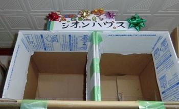 シオンハウス 正月1.JPG