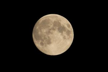 中秋の名月2 (800x535).jpg