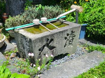 弁天寺6.JPG