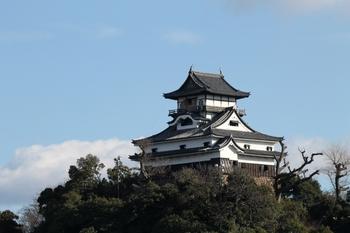 犬山城2 (800x533).jpg